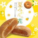 夏みかんの花 和菓子 北海道産手亡豆と国産夏みかんのやわらか饅頭 まんじゅう 単品