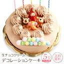 誕生日ケーキ バースデーケーキ生チョコクリーム デコレーションケーキ 5号誕生日 ケ