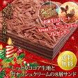 チョコレートケーキ【送料無料】クリスマスケーキ バースデーケーキ 誕生日ケーキ 誕生日 バースデー ケーキ 子供[凍] ギフト 誕生日プレゼント 洋菓子