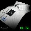 【a.v.v】形態安定・ビッグサイズワイシャツ・吸水速乾刺し子風ドビー・ドゥエボットーニ・ボタンダウンシャツ(3L・4L・5L/キングサイズ)(長袖ワイシャツ/Yシャツ/ドレスシャツ/ビジネスシャツ) 父の日 lucky5days