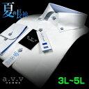 【a.v.v】形態安定・ビッグサイズドビーチェック・ボタンダウンシャツ(3L・4L・5L/キングサイズ)(長袖ワイシャツ/Yシャツ/ドレスシャツ/白シャツ/フレッシャーズ) 父の日 lucky5days