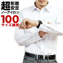 【クーポンで10%OFF】ワイシャツ 長袖 形態安定 メンズ...