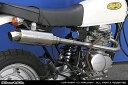 WirusWin エイプ100 ロイヤルマフラー スポーツタイプ/ウイルズウィン