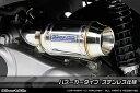 WirusWin ピアジオ MP3 250RL サイレンサー型 エアクリーナーkit /ウイルズウィン