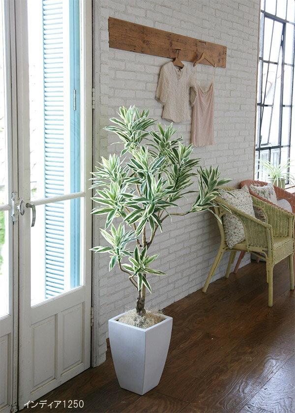 送料無料 フェイクグリーン インディア1250【ソングオブインディア・人工植物・ドラセナレフレクサ】 送料無料!当社グリーンコーディネーターが厳選した直輸入のリアルフェイクグリーン・人工植物