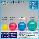 スポーツ 関連商品 ボディーボール65 H-7262