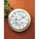 生活関連グッズ 掛け時計 ウォールクロック ウェザーパル BW-5048 シャンパンゴールド