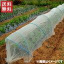 【送料無料】愛農 防虫ネット シート 1.8×50m/0.6mm目 [虫除けネット 防虫網 虫よけネ
