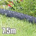 セフティ3 灌水ホース 散水チューブ 散水ホース 散水
