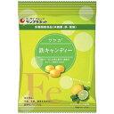 サンプラネットサヤカ鉄キャンディー レモンライム味 65G ...