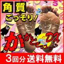 【3袋セット】角質ごっそりフットケア(両足3回分)足裏 角質除去 フットケア ピーリ