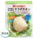 無添加 サラダチキン 高たんぱく質【国産鶏の胸肉使用 常温で長期保存】 プレーン 10食セッ