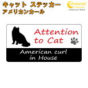 アメリカンカール イン ハウス ステッカー 【猫 cat i