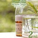 【ホワイトセージ カリフォルニア産 2ml】エッセンシャルオイル 精油 無農薬 無添加 オーガニック White sage Essential Oil Salvia ap..