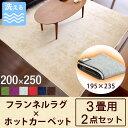 ラグ×ホットカーペット2点セット◆200円OFFクーポン配布中◆【送料無料】 ラグ 200×250