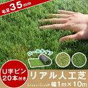 【送料無料】 人工芝 ロールタイプ リアル U字固定ピン20本入 ロール 芝丈35mm 10m 1m