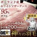 【送料無料】 神々の羽毛 ゼウス 二層キルト 国産 ホワイトグース 95% かさ高200mm以上 484dp以上 CILプラチナラベル 羽毛布団 ダブル 日本製
