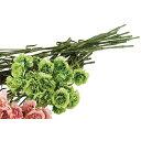 カーネーションスプレー グリーン 6本いつもと雰囲気の違うカーネーションで母の日の演出に。母の日 カーネーション 造花 ブーケ