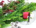 【クリスマスリース手作りキット】【生花】黄金ヒバのクリスマスリースキット564 【切花】【資材】 【RCP】