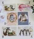 フランスから届く猫のポストカード(A,B,C,D,E,F)♪♪ 便せん ギフトカード 猫 キャット ポストカード
