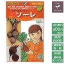 野菜のタネ ソーレ(ビート) イタリアの珍しい種を送料無料でお届け!!