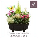 【送料無料】季節の寄せ植え「秋」タル型鉢 黒 ★ ギフトにも最適な季節のお花を寄せ植えに♪【プレゼント ブリキピック 玄関 ベランダ】