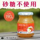 【砂糖不使用】低糖度 信州須藤農園 100%フルーツ アップル190g