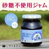 【ケース販売】 【砂糖不使用】低糖度ジャム 信州須藤農園 100%フルーツブルーベリージャム190g 1ケース(6個入り)