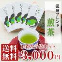お茶 緑茶 【送料無料】 厳選ブレンド 『 煎茶 』 いろどり 100g袋入り×5袋セット 八女茶 鹿児島茶 九州産茶葉をブレンド仕上げ 味に拘った 美味しい 煎茶 事務所用 普段使い に人気の 日本茶 です