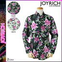 Joy01-1520110603-a
