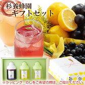 L3P 【果汁蜜】300g×3本セット(ブルーベリー、ゆず蜜、レモン) 【楽ギフ_のし】【楽ギフ_包装】