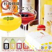 GA4P 【果汁蜜】300g×4本セット(ゆず蜜、ブルーベリー、アセロラ、巨峰) 【楽ギフ_のし】【楽ギフ_包装】