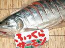 ふっくらサ-モン手塩仕込み(新巻塩鮭)