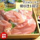 【送料込】本物の地鶏!名古屋コーチン[贈答箱入り][ 国産 鶏肉 新鮮 ]【熨斗無料】【メッセージカード無料】【楽ギフ_のし宛書】