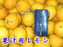 加工用レモン8Kg