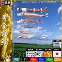 鯉のぼり 錦鯉 ノーマル 黄金錦鯉 7m5匹 飛龍吹流し 139600166