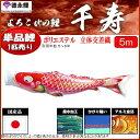 鯉のぼり 徳永鯉 こいのぼり単品 千寿 撥水加工 赤鯉 5m 139594207