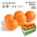 ショッピング紅まどんな 愛媛県産 天草 あまくさ 秀品 S〜Mサイズ 5kg JAえひめ中央 紅まどんなの親品種 みかん フルーツ