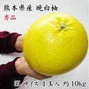 熊本県八代特産 晩白柚(ぱんぺいゆ) 秀品 4玉 3Lサイズ 10kg(1玉約2.5kg)