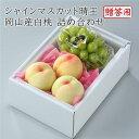 【送料無料】岡山県産 白桃 シャインマスカット 詰め合わせ 【予約 7月上旬より発送】