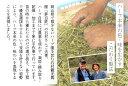 木村式自然栽培 朝日米 岡山県産 白米 ごはん お米 20kg (5kg×4) 送料無料