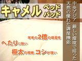 キャメル 国産 日本製 シングルサイズ サイズオーダー可能吸湿性がウールの2倍!送料無料&ポイント付きキャメルベッドパッド シングルサイズ(100×200cm)