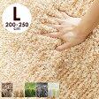 クーポンで1000円OFF(5日0時〜8日2時)ラグ ラグマット 200×250 厚手 目付け2000 2色織 ふかふか カーペット シャギーラグ 滑り止め 絨毯 じゅうたん 楽天 通販 CARPET 送料無料
