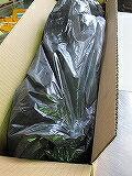 備長粉炭(土佐、四国)5kgの商品画像