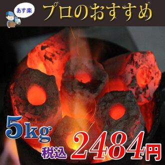 燒烤木炭火盆燒烤肉烤雞肉串其他應用程式方便切成煤太陽能炭 5 公斤