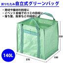 Greenbag1