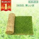 【6/21から26はエントリーでポイント最大11倍】芝生 天然芝 三種混合ロール巻芝 送料無料 (芝生 通販)