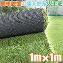 人工芝 最高級人工芝 FY 1m×1m(芝 通販)