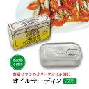 オイルサーディン(サルディニーヤス) 小サイズ 16から18ピース イワシのオリーブオイル漬け【あす楽対応】