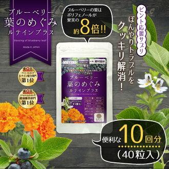 [大約 10 倍 (40 粒片)] 宮崎駿、 宮崎大學聯合發展宮崎駿的藍莓葉提取物。